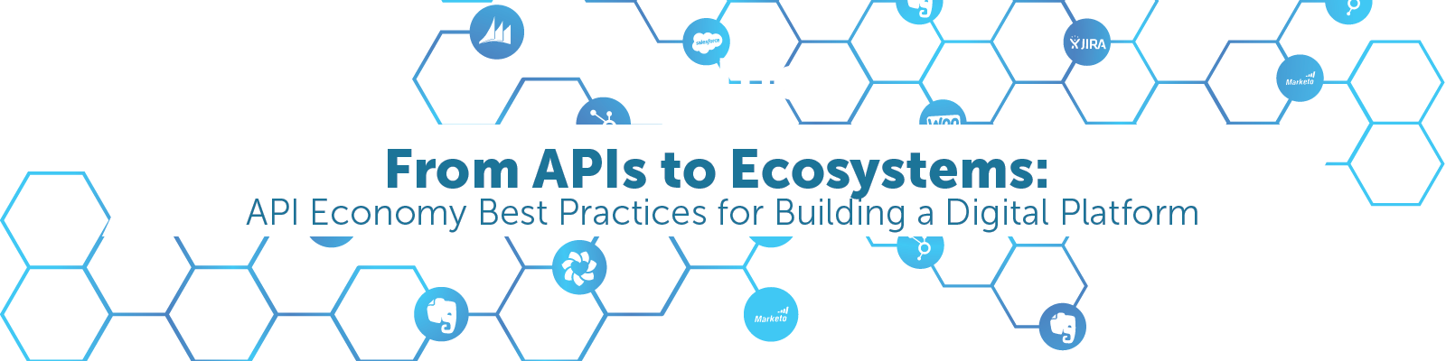 API Economy best practices for building a digital platform