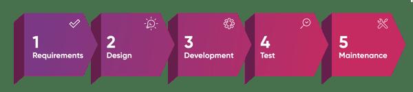 API Integration Process